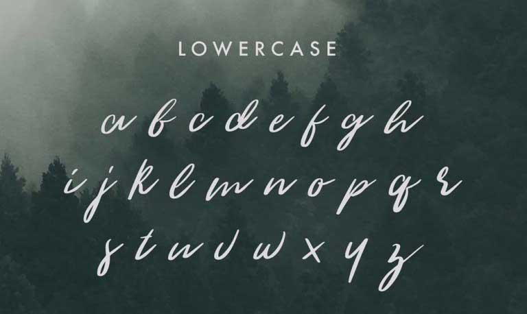 the_woodlands_long_lowercase